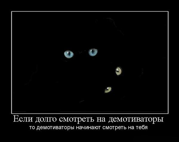 Демотиватор - он смотрит на тебя