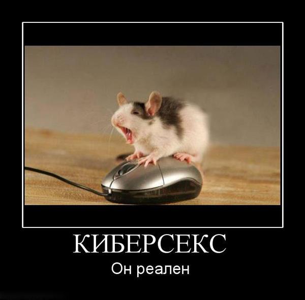 Демотиватор - мышка на мышке