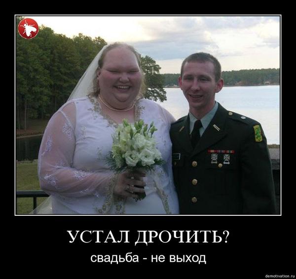 Демотиватор - вот такая свадьба…
