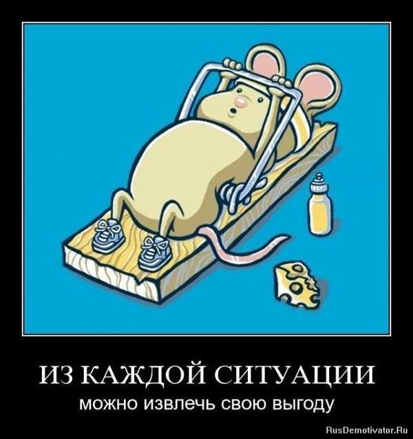 Демотиватор - спортивная мышь